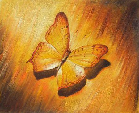 Obraz – Motýl II.