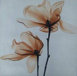 Obrazy - Květ ve větru