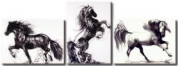 Obrazový set - Divocí koně