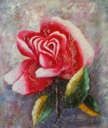 Obraz - Červená růže