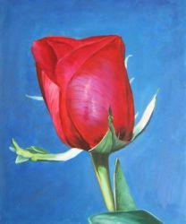 Obraz - Rudá růže I.