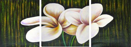 Obrazy - Bílé květy I.