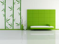 Samolepka na zeď - bambus BASTONE