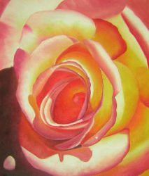 Obraz - Čajová růže