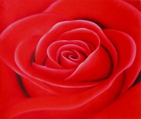 Obraz - Květ růže I.