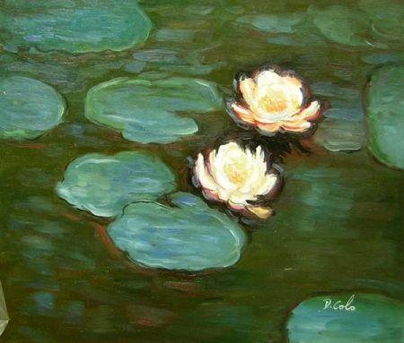 Obraz - Lekníny na jezeře